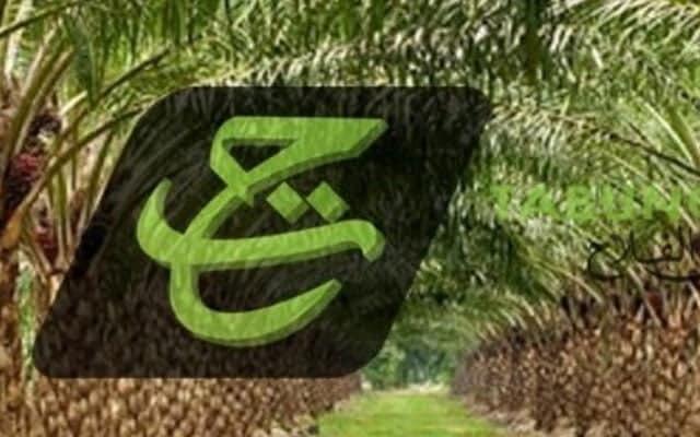 K'jaan PN benarkan penjualan ladang TH di Sarawak